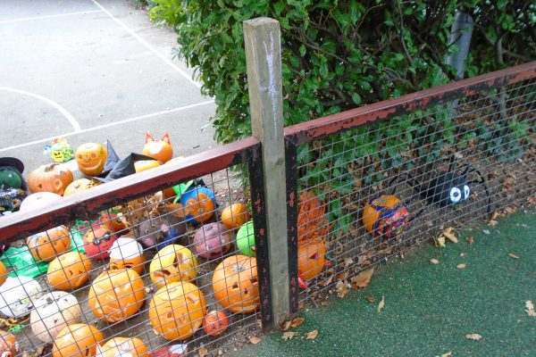 Pumpkin Parade 4