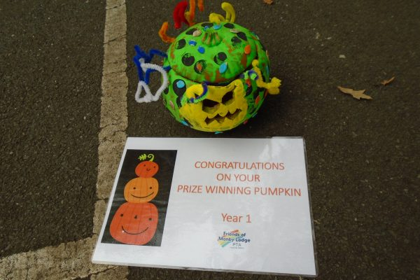 Pumpkin Year 1 Winner