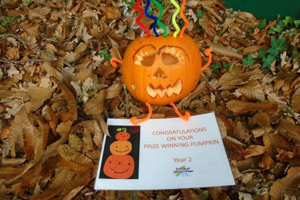 Pumpkin Year 2 Winner