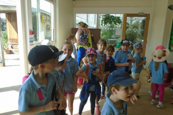 Year 1 Trip to Wisley 14