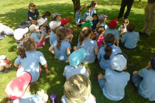 Year 1 Trip to Wisley 17