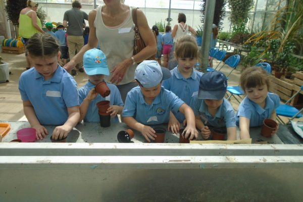Year 1 Trip to Wisley 18