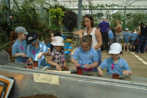 Year 1 Trip to Wisley 21