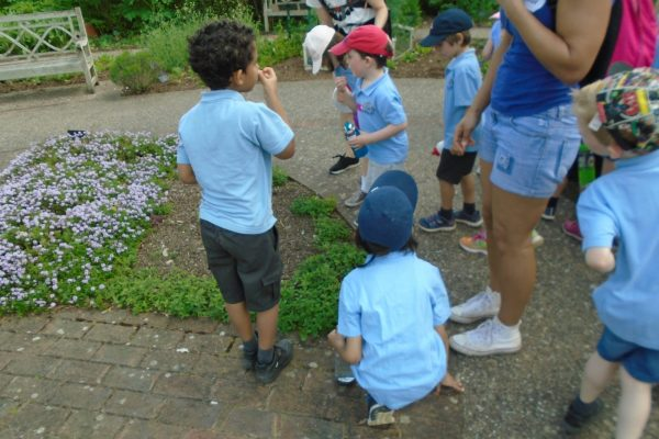 Year 1 Trip to Wisley 7