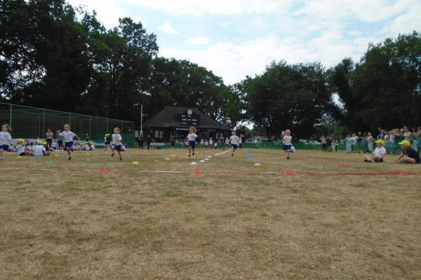 Sports Day 7
