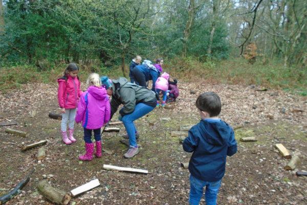 Nower Wood 2 (2)