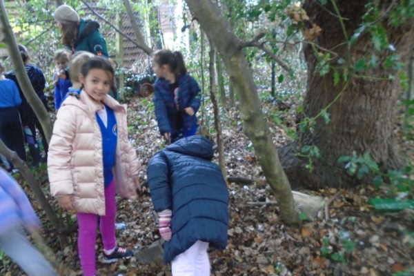 Forest School Lion 4