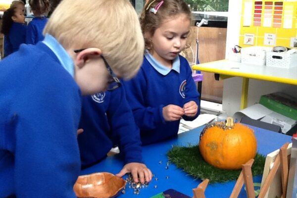 Year R Pumpkin Fun 1